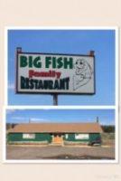 Big-Fish-150x224.jpg