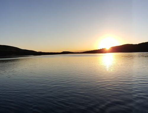 Panguitch Lake Panorama